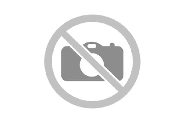 Logo brochet reduit.jpg